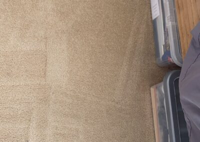 carpet-cleaning-before-2021-09-07-04